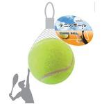 テニスボール 425-02 【12個セット】