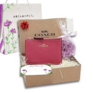 COACH 母の日 ギフトセット IDスキニー コインケース F12186IMLJVm19