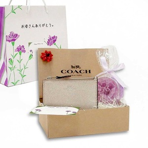 COACH 母の日 ギフトセット メタリック IDスキニー コインケース F21072SVPLm19