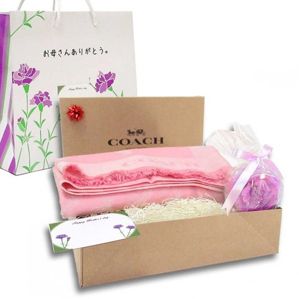 COACH 母の日 ギフトセット バイカラー ロングストール F26587BLHm19