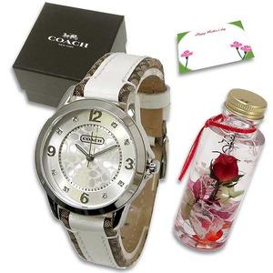 COACH 母の日 ハーバリウムギフトセット  レディース腕時計 ホワイト 14501619m97