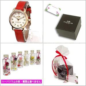 COACH 母の日 ハーバリウムギフトセット  レディース腕時計 レッド 14502710m97
