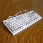 東プレ REALFORCE 108UH/静電容量無接点/ALL45g/108キー/USB SA0100