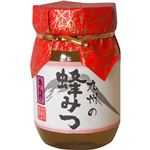 (お徳用 2セット) 九州のれんげ蜂蜜 500g ×2セット