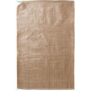 (まとめ) 大明商事 ガラ袋 DAGB600P 1袋(25枚) 【×5セット】 - 拡大画像