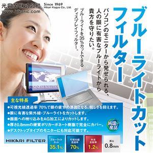 光興業 ブルーライトカットフィルター23.8インチ(16:9)用 LEDW-238 1枚