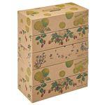 カミ商事 エルモアティシューKazaruKrafty ナチュラル 180組/箱 1セット(50箱:5箱×10パック)