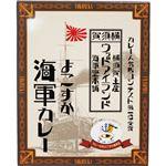 (まとめ)ヤチヨ ウッドアイランドよこすか海軍カレー 200g 1セット(5食)【×2セット】
