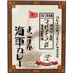 (まとめ)ヤチヨ ウッドアイランドよこすか海軍カレー 200g 1食【×10セット】