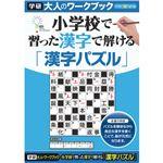(まとめ)学研ステイフル 大人のワークブック 漢字パズル 1冊 【×5セット】