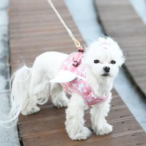 Its Dog(イッツドッグ) マイエンジェルベストハーネス/ピンク【XL】 - 拡大画像