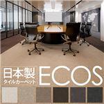 業務用 タイルカーペット 【SG-501 50cm×50cm 10枚セット】 日本製 防炎 制電 スミノエ 『ECOS』