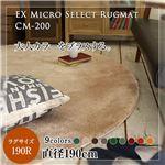 モダン 絨毯/フロアマット 【直径190cm ハイドロブルー】 円形 洗える 床暖房可 防滑 『マイクロセレクトラグマット』