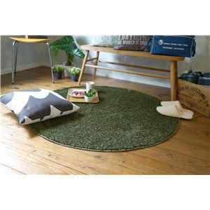 防ダニ ラグマット/絨毯 【120×120cm 円形 グリーン】 日本製 洗える 防滑 『スミノエ レーヴ』 〔リビング ダイニング〕