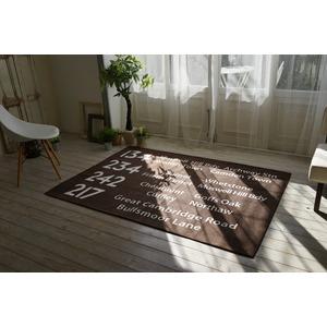 シェニールプリントラグ/絨毯 【185cm×185cm ブラウン】 正方形 洗える 防滑 ポリエステル 『バスサイン』 〔リビング〕 - 拡大画像