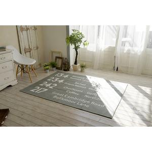 シェニールプリントラグ/絨毯 【185cm×185cm グレー】 正方形 洗える 防滑 ポリエステル 『バスサイン』 〔リビング〕 - 拡大画像