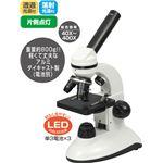 電池式LED生物顕微鏡