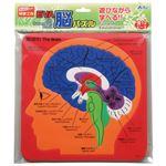 (まとめ)アーテック EVA脳パズル 【×30セット】