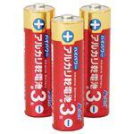 (まとめ)ハイパワーアルカリ乾電池単3形(3本組) 【×10個セット】