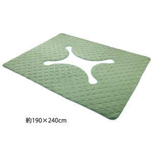 洗えるキルトタイプ掘炬燵(ごたつ)ラグマット 【3: 約190cm×290cm】 長方形 グリーン(緑) - 拡大画像