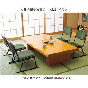 スタッキングチェア/楽座椅子4点セット スチール製 グリーン(緑) 〔法事/集会/会食/来客時〕