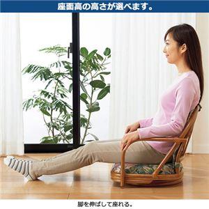 籐回転座椅子2脚組 【1: ロータイプ】 木製 座面高12cm 肘付き