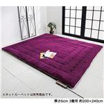 ふっかふかラグマット 単品 【厚さ6cm 3畳用 約200×240cm】 床暖可 パープル(紫)
