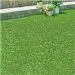 リアルに見える人工芝 約幅1×長さ2m