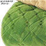 吸湿発熱 ラグマット/絨毯 【ふっくらタイプ 4畳(約190×280cm) グリーン】長方形 洗える 抗菌防臭 防ダニ ホットカーペット対応 〔リビング〕