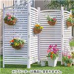 お手軽 ガーデンパーテーション 4連・ルーバータイプ ホワイトウォッシュ 完成品