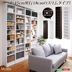 ウォールラック-幅45・浅型タイプ-【Musee-ミュゼ-】(天井つっぱり本棚・壁面収納) ホワイト