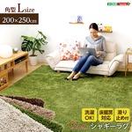 シャギーラグマット/絨毯 【Lサイズ/ブラウン】 200cm×250cm 『Caress』 滑り止め付き 洗える 床暖房・ホットカーペット対応