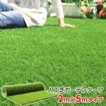 人工芝ガーデンターフ【ARTY-アーティ-】(2×5mロールタイプ)