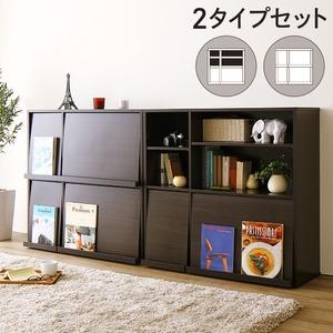 ディスプレイラック 2個セット(本棚 リビング収納)雑誌用 フラップ扉付き ダークブラウン