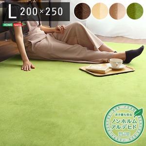 洗える ラグマット/絨毯 【Lサイズ 200×250/イエローベージュ】 高密度フランネルマイクロファイバー 『ナルトレア』