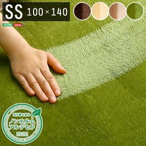 洗える ラグマット/絨毯 【SSサイズ 100×140/グリーン】 高密度フランネルマイクロファイバー 『ナルトレア』