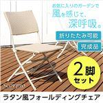 折りたたみ ガーデニングチェア/折りたたみ椅子 【2脚セット ホワイト】 ラタン風デザイン 『SCORPIO-スコルピオ-』 【完成品】