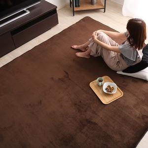 低反発 ラグマット/絨毯 【Mサイズ 190×190cm/ブラウン】 高密度マイクロファイバー 遮音性能 『リウル』 - 拡大画像