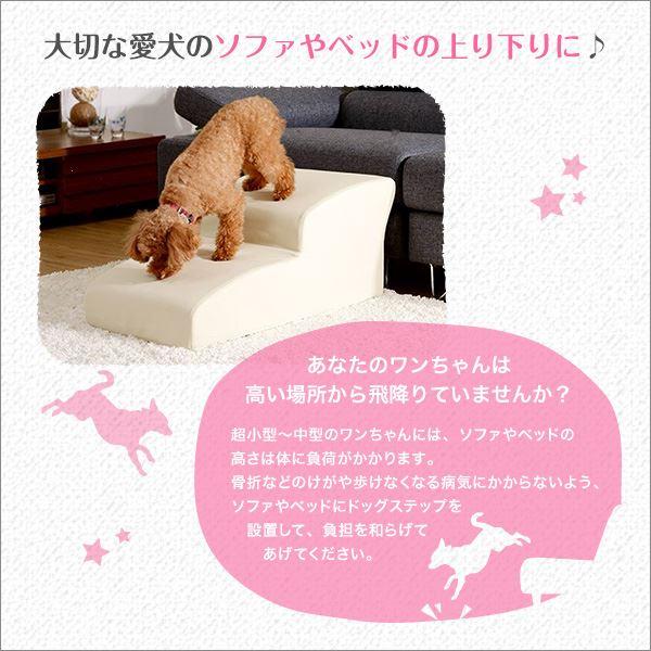 日本製ドッグステップPVCレザー、犬用階段2段タイプ【lonis-レーニス-】 ブラック