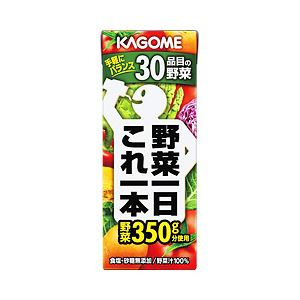 【まとめ買い】カゴメ 野菜一日これ一本 紙パック 1箱(200ml×24本) - 拡大画像