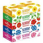 (業務用セット) クレシア スコッティ ティシューペーパー 花柄 1パック(5箱) 【×10セット】