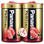 (まとめ)パナソニック アルカリ乾電池 単2形 1パック(2本)【×10セット】