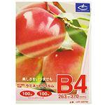 (まとめ)ラミーコーポレーション ラミネートフィルム B4 100枚 20702【×3セット】