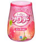 (まとめ)小林製薬 トイレのサワデー ピーチの香り 本体1個【×10セット】