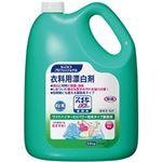 (まとめ)花王プロフェッショナルサービス  ワイドハイターEXパワー 粉末タイプ 1本(3.5kg)【×2セット】