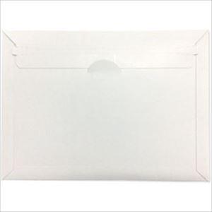 (まとめ)フロンティア デルパック A4サイズ 1パック(25枚)【×2セット】 - 拡大画像