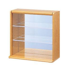 (業務用セット) コレクションケース ミニ 透明アクリル棚板タイプ CCM-001LS【×2セット】