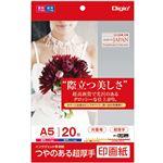 (業務用5セット) Digio2 インクジェットプリンタ用紙 印画紙タイプ A5/20枚 JPSK2-A5-20