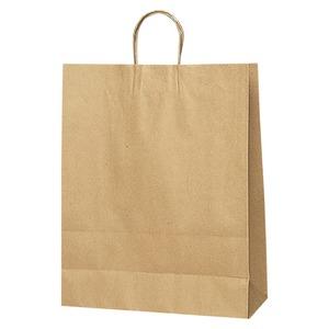 【訳あり・在庫処分】(業務用セット) シモジマ 手提紙袋 クラフト(50枚入) 3276300 クラフト 【×2セット】 - 拡大画像