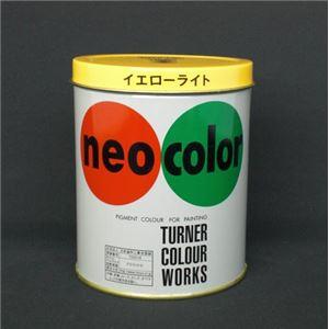 (業務用セット) ターナー ネオカラー 600ml缶入・専門家用 B色 イエローライト